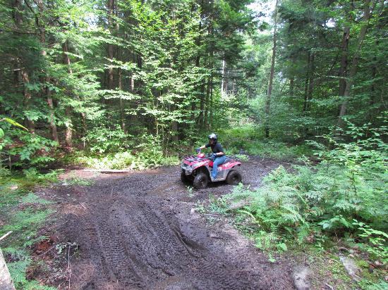 DirtVentures ATV: Mud puddle action shot