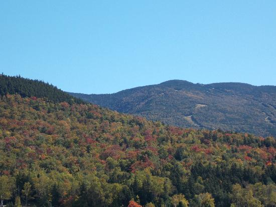 Top Notch Inn: View from Great Glens Trail lodge