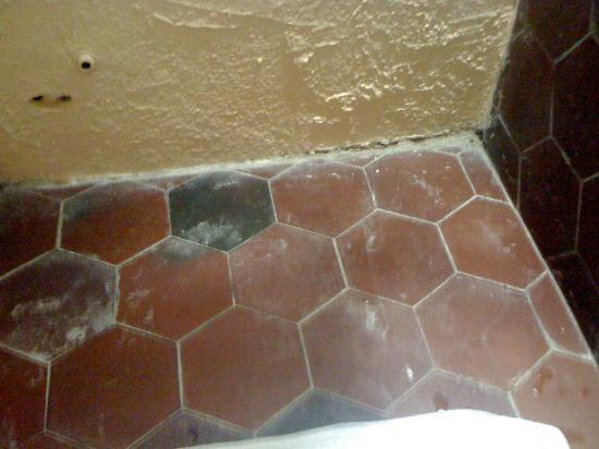 Chateau de Saint-Cirq-Lapopie: propreté du carrelage de la salle de bain