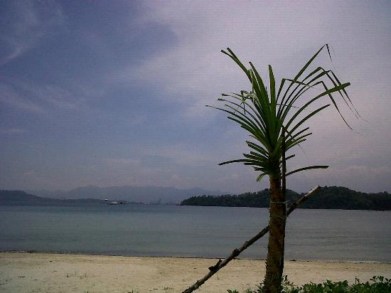 Gaya Island Resort: Beach