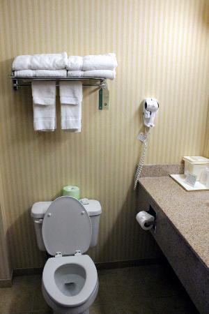 Comfort Inn East Windsor : Bathroom