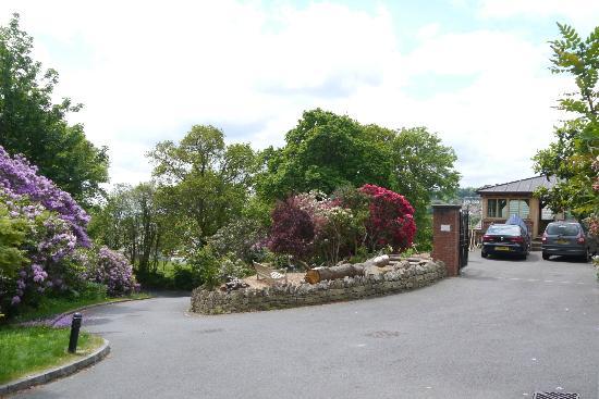 Rhododendron House B&B: driveway