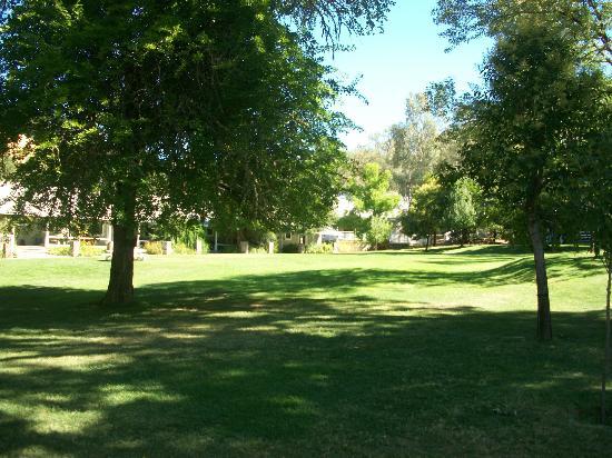 Vichy Springs Resort: beautiful grounds