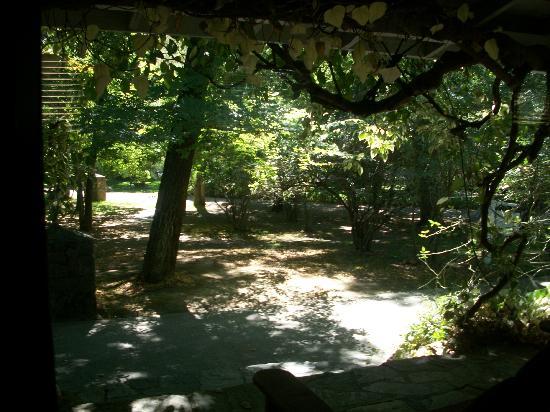 Vichy Springs Resort: View from room