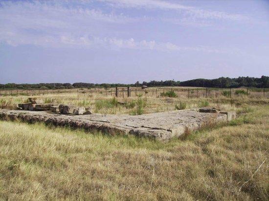 Cirò Marina, Italia: Gli scavi del tempio apollo aleo