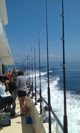Majesty Deep Sea Fishing at Monty's Marina: The side of the boat when moving to the next location.