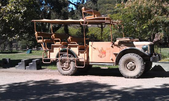 Safari West: Jeep for Safari Tour