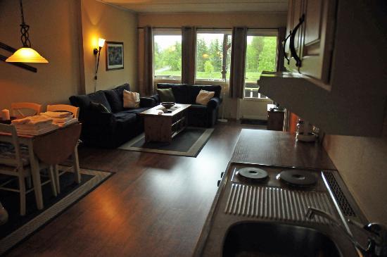 Raulandsfjell: Lounge/Kitchin