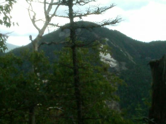 High Peaks Information Center: Looking at Armstong from Beaver Falls trail