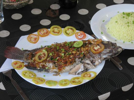 Saman's Guesthouse: coral lakefish
