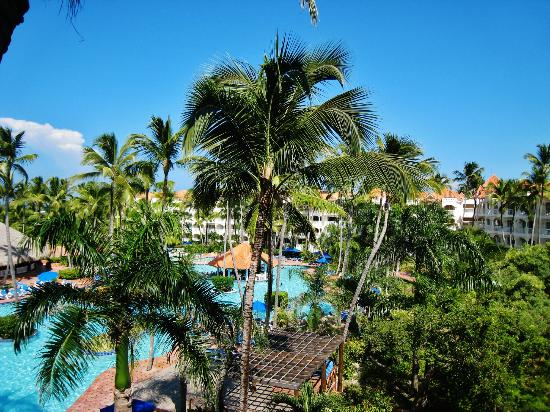 Occidental Caribe: View from room