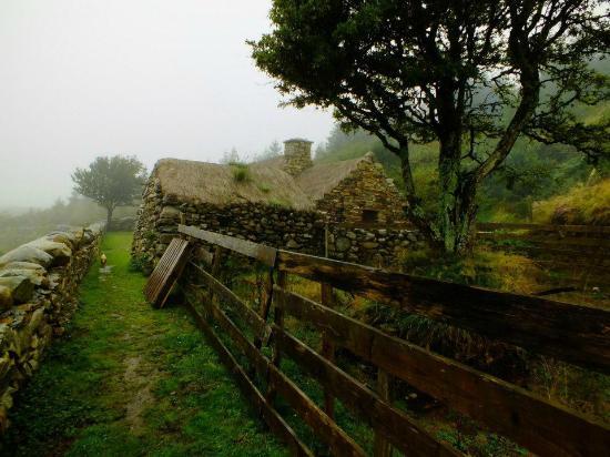 Dan O'Hara's Homestead Farm : Cottage hinterm Farmhouse