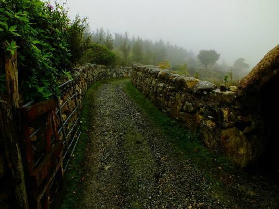 Dan O'Hara's Homestead Farm : Weg zum Cottage