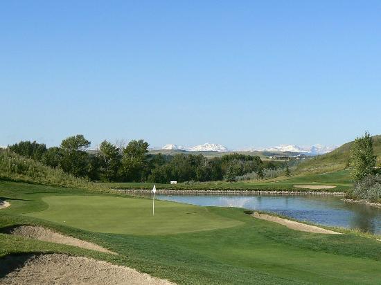 D'Arcy Ranch Golf Club : DARCY 7th
