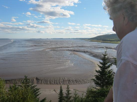 Hopewell Rocks: The Flats