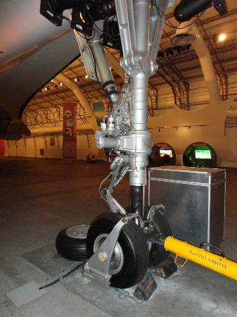 Barbados Concorde Experience: Front Landing Gear