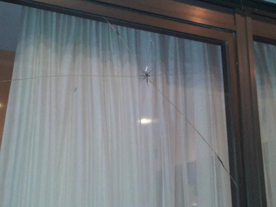 Hotel Nimfa: Fenêtre de la salle de jeux