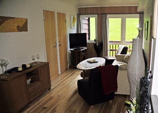Myrkdalen, Norvège : Lounge/Balcony