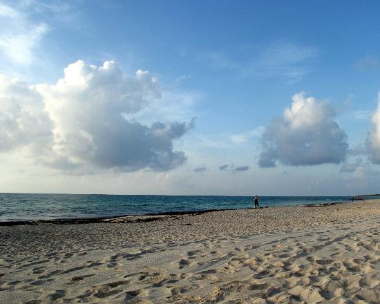 Iberostar Paraiso Lindo: beach
