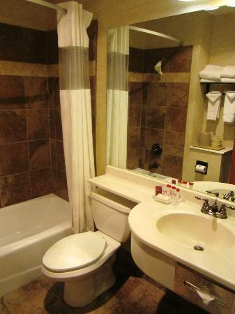 Ramada Frisco: Bathroom
