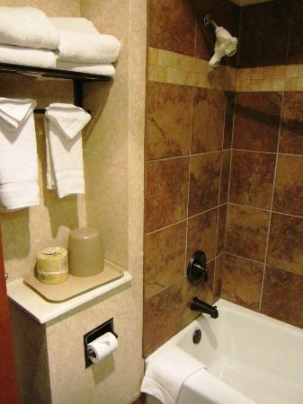 Ramada Frisco: Shower