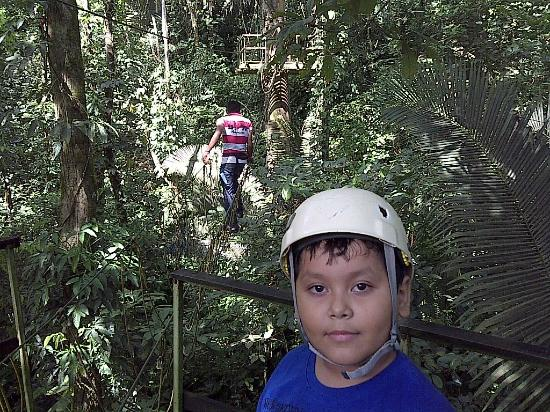 Paraiso Rainforest and Beach Hotel: en el canopy