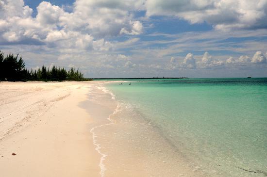 Isla Pasion: Beach