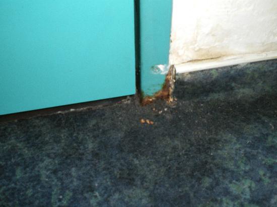B&B Hôtel Toulon Ollioules : Pourriture du a l'eau de la douche qui coule sur la moquette
