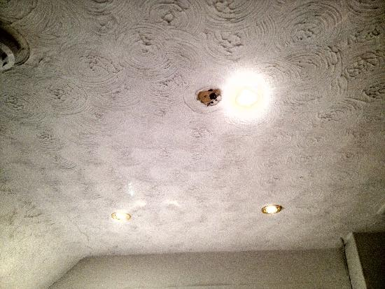 Anand Lodge: hole in ceiling.
