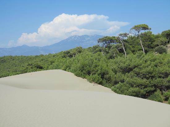 Magnificent dunes mid away along Patara beach