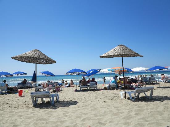Patara Beach: Sunbeds and parasols near the beach cafe