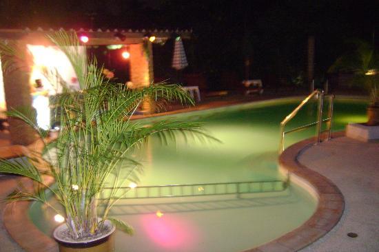 Tropical Garden Lounge Hotel: Pool