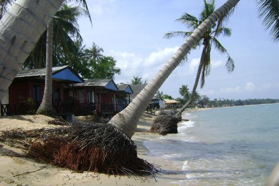Tropical Garden Lounge Hotel: Strand