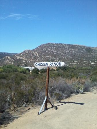 Pacific Southwest Railway Museum : Chicken Ranch crossing