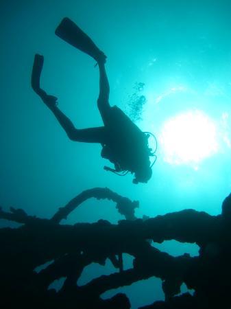 Juno Wreck, Dive Savaii