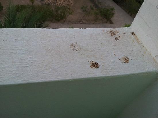 Hotel Les Quatre Saisons: propreté du balcon