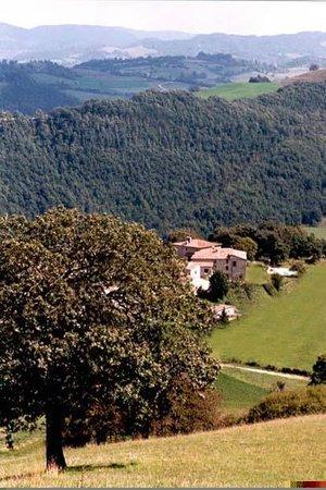 Agriturismo Chignoni | Esterni