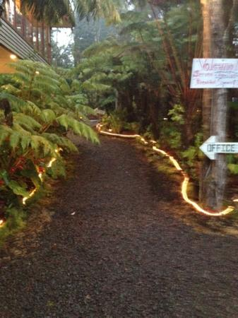 Volcano Inn Cottages : front walkway
