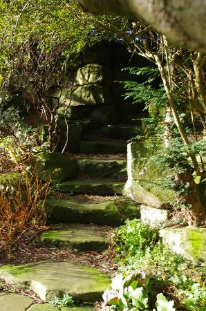 Swinton Park: hidden steps