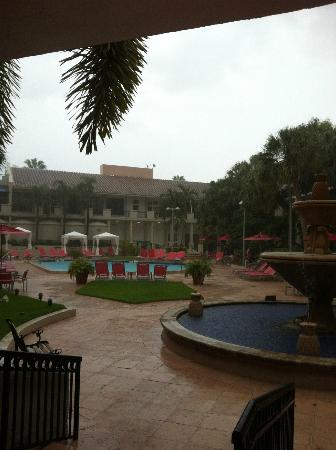 Wyndham Boca Raton Hotel: pool area during a monsoon!