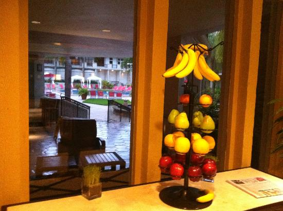 Wyndham Boca Raton Hotel: fresh fruit