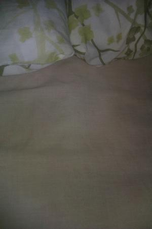 The Light House B & B: Stained bed sheets