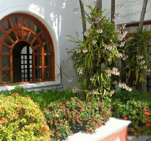 Hotel Majestic: Los jardines del Majestic son muy bonitos y rodean la piscina