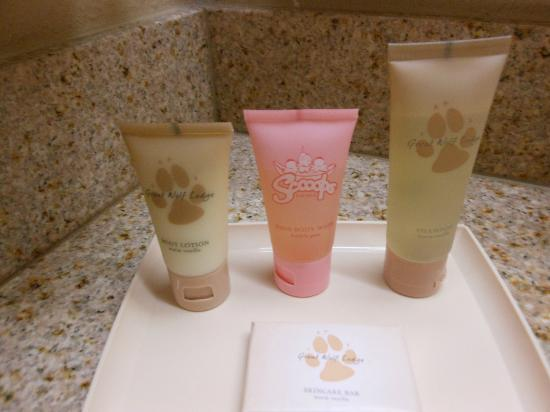 Great Wolf Lodge: toiletries