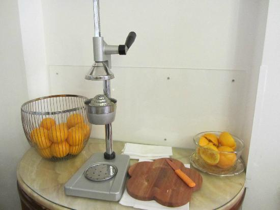 Ca' Angeli: Juicer Contraption for fresh oj