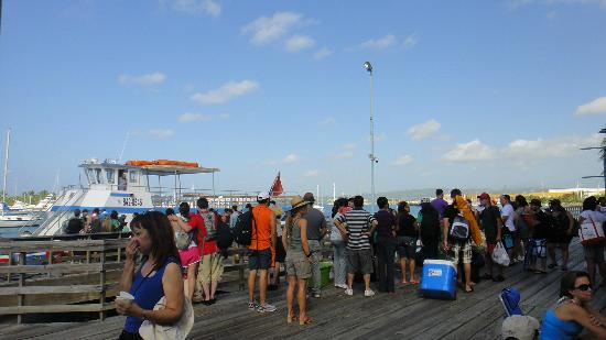Isla de Caja de Muertos: Ferry