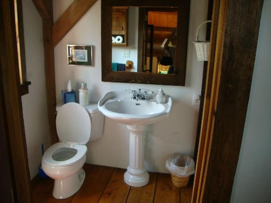 Meadowbrook School Bed & Breakfast: Red Room bathroom