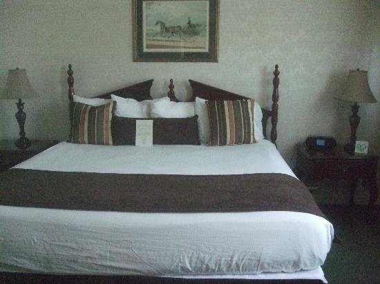 Genetti Hotel - Williamsport: There was a queen size bed in one room