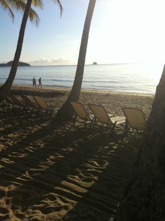 Pullman Palm Cove Sea Temple Resort & Spa: Beach out the front