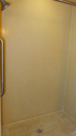 Holiday Inn Express Hotel & Suites Quincy I-10: Great huge shower